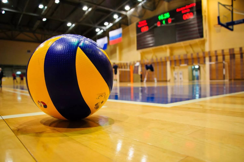 Волейбол в зале картинки